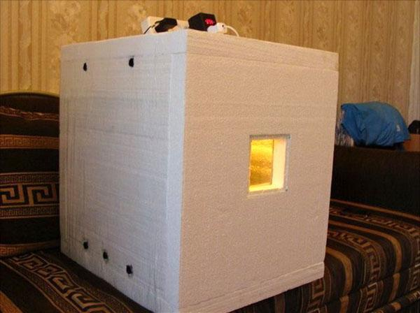 Терморегулятор для инкубатор своими руками фото 488