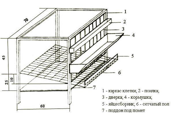Как отделать потолки своими руками