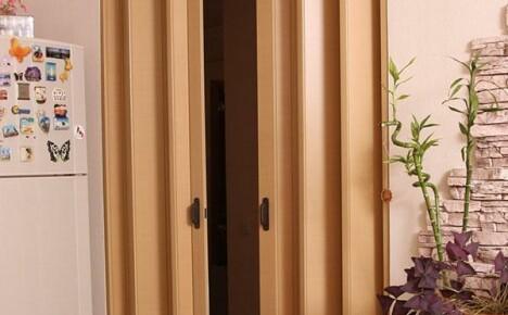 Дверь гармошка: от преимуществ до особенностей установки