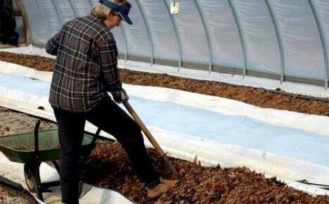 Осенние работы в теплице: убираем и удобряем грядки
