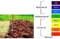 Как определить кислотность почвы научными и народными методами