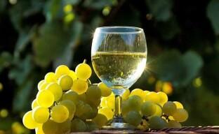 Приготовление белого вина из Цитронного Магарача