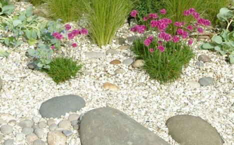 Преимущества использования мульчирования почвы в саду, на грядках и клумбах