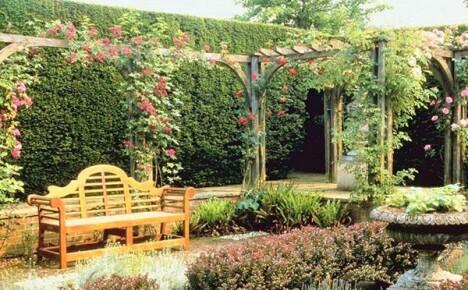 Как создать вертикальный сад
