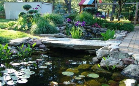 Лучшие идеи дизайна водоемов на дачных участках