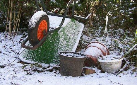 Календарь дачника на ноябрь: работы на огородных грядках