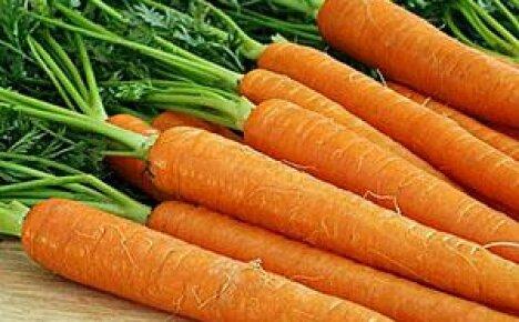 Морковь — средство от ста болезней