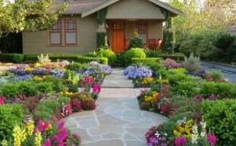 Как красиво оформить клумбу из многолетних цветов