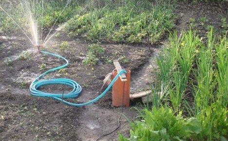 Распылители для огорода: советы по выбору устройств