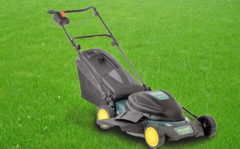 Как выбрать газонокосилку для ухода за усадьбой