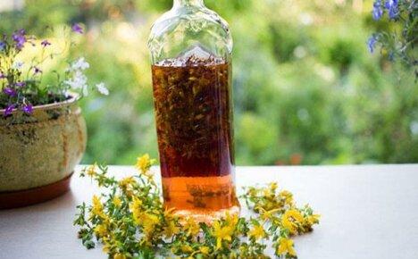 Рецепты приготовления настойки зверобоя и ее польза для здоровья