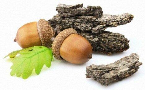 Простые рецепты применения коры дуба при проблемах со здоровьем