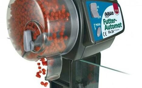 Какую автоматическую кормушку выбрать для аквариумных рыбок