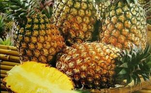 Как выращивают ананас на плантациях Коста-Рики?