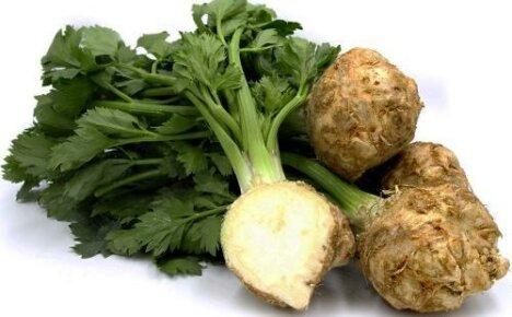 Как есть сельдерей: готовим салаты, первые и вторые блюда
