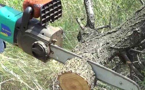 Советы по работе с электрической цепной пилой