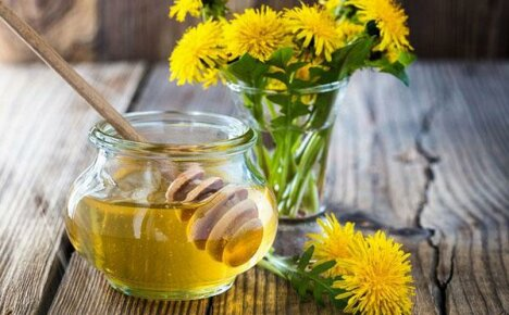 Как приготовить мед из соцветий одуванчиков?