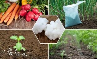 Минеральное удобрение мочевина – третья рука агрария