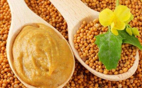 Используем полезные свойства горчицы для лечения простуды и похудения