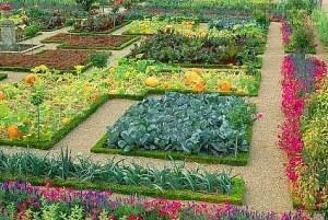 Огород прямоугольной