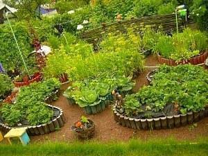 Французкий огород