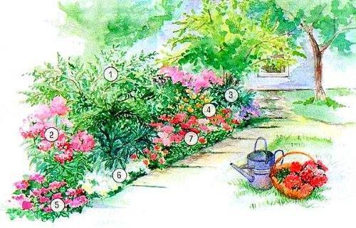Простые схемы цветников
