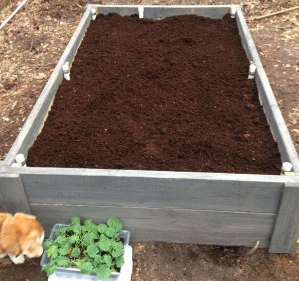 рыхлая плодородная почва