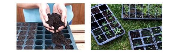 Линия для рассады посев семян рассады в кассеты