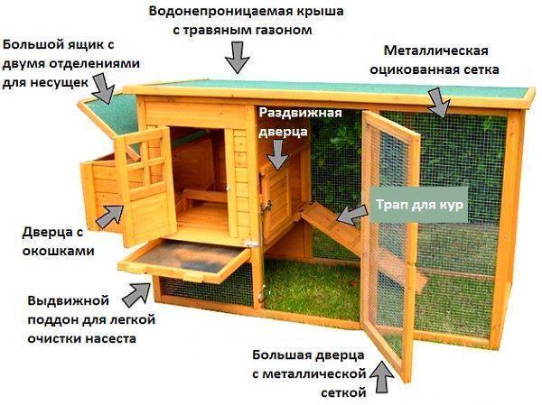 Домик для кур несушек фото размеры