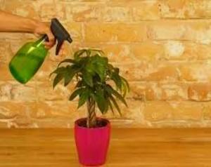 цитрон инструкция по применению для сада - фото 6