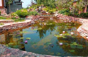 пруд перед домом