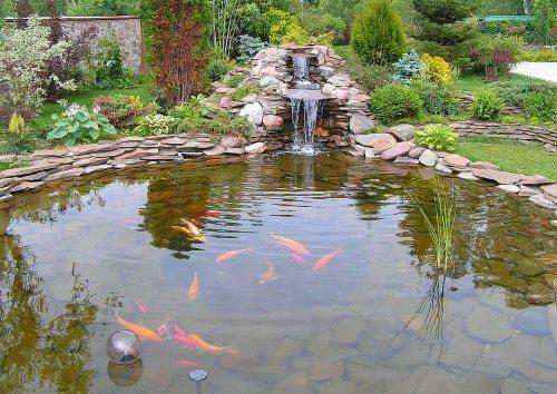 каменный пруд с рыбками