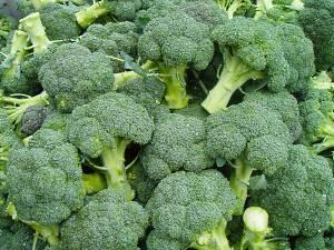 богатый урожай капусты брокколи