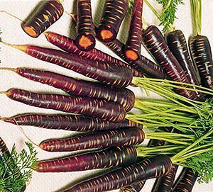 Какого цвета была морковь изначально