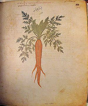 Храмовый рисунок моркови