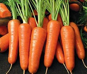 Морковь Шантане