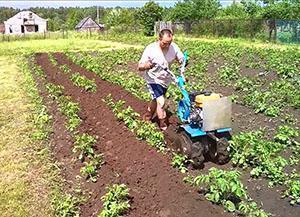 Мотоблок для окучивания картофеля