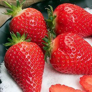 Спелая сладкая ягода