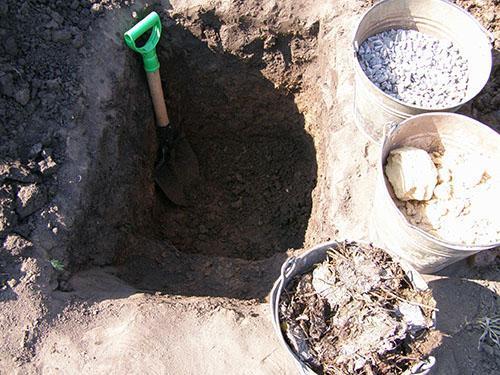 Формировка плодородного слоя грунта