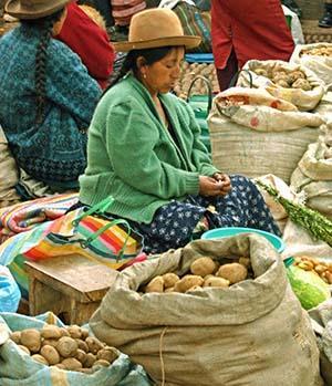 Картофель как основная пища
