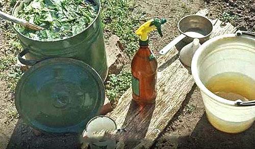 Подготовка раствора к обработке яблонь