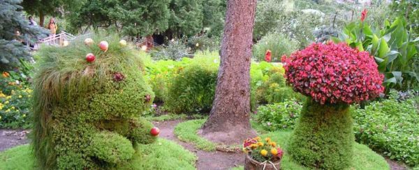 Садовые композиции с девичьим виноградом