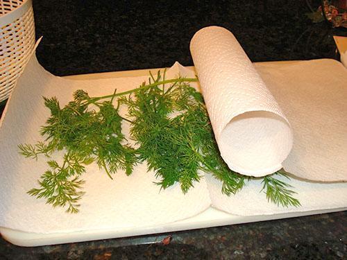 Хранение укропа в холодильнике в бумажных полотенцах