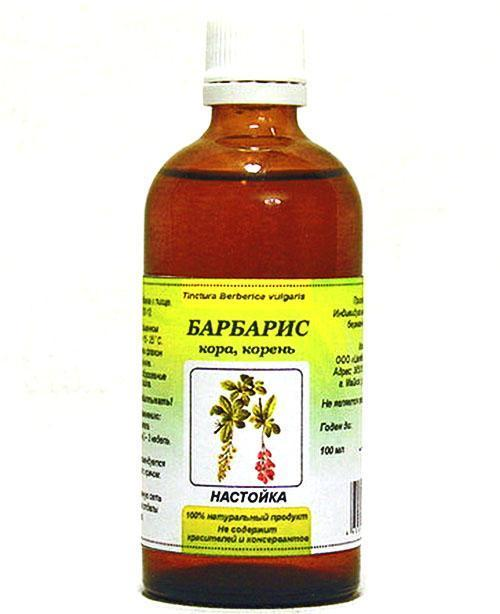 Ягоды барбариса полезные свойства и противопоказания