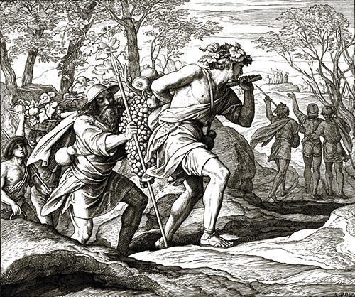 Сбор винограда в 6 тысячелетии до нашей эры
