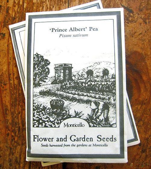 Семена гороха Принц Альберт