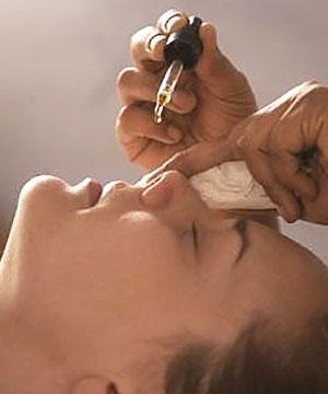 Настойкой каланхоэ капают нос при насморке