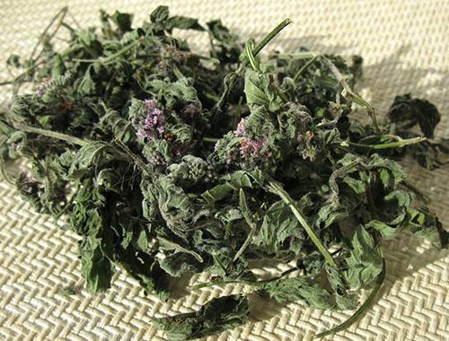 Сухая мята для чая хранится долго