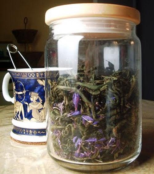 Сухая мята для чая