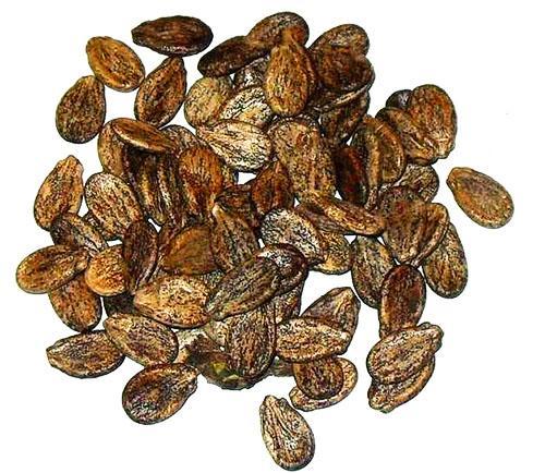В арбузных семечках много минералов, витаминов